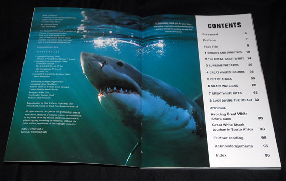 South Africa S Great White Shark